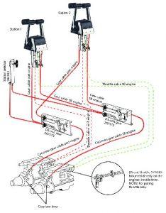 SeaStar DS mekanismi kaasu